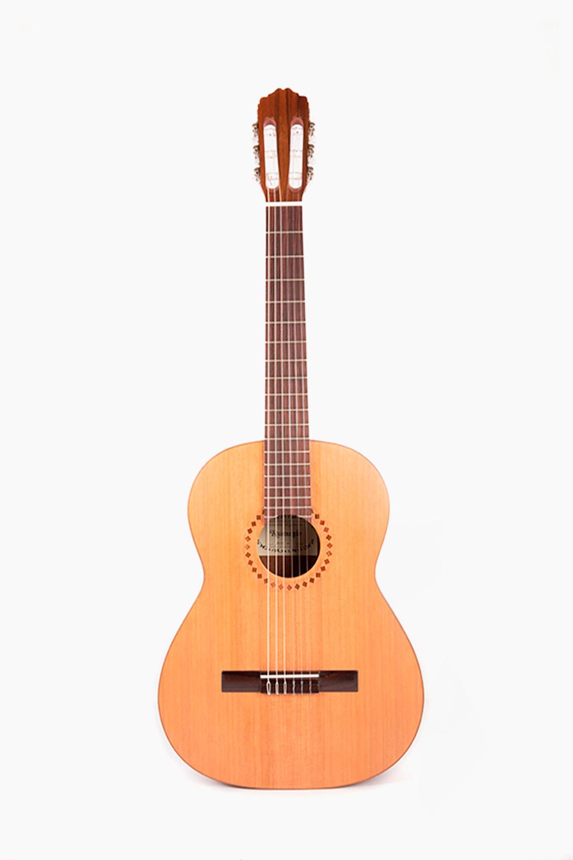 Guitarra Española Raimundo 103M