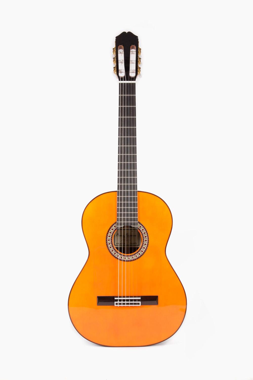 Guitarra Flamenca Raimundo 145 Palosanto