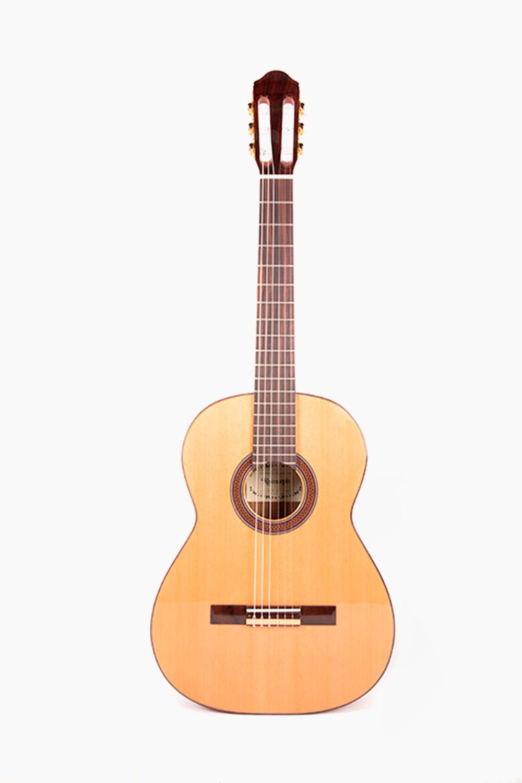 Guitarra Española Raimundo 120E